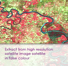Extract from high resolution satellite image (satellite in false colour)